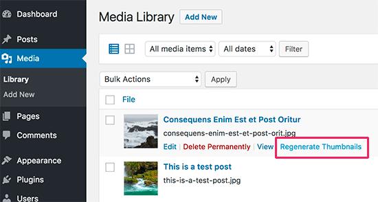 باز سازی تک تک عکس ها با افزونه Regenerate Thumbnails
