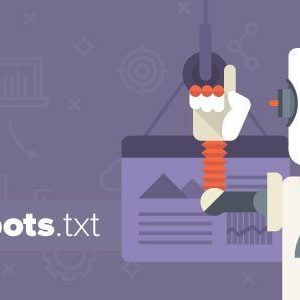 بهینه سازی Robots.txt برای سئو