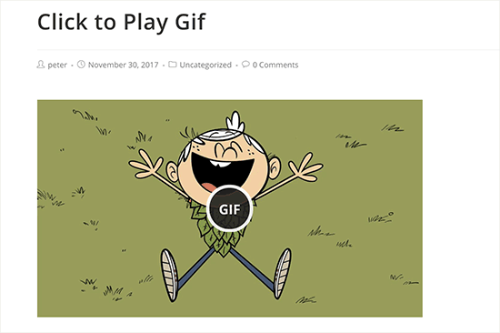 پیش نمایش افزونه WP GIF Player