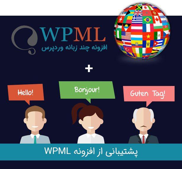 افزونه یوزر پرو با WPML