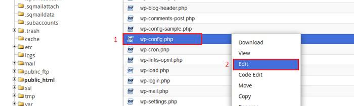 فایل wp-confiq.php