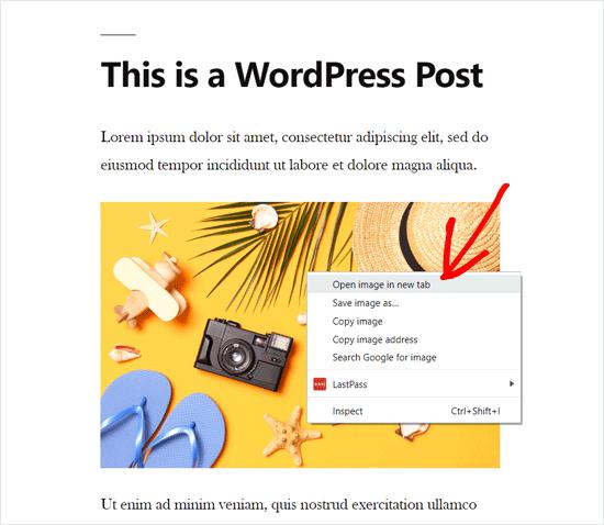 پیدا کردن URL عکس در وردپرس