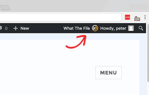 منوی افزونه What The File